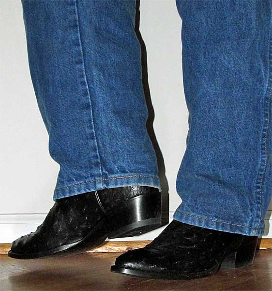 Dan Post Black Ostrich Boots