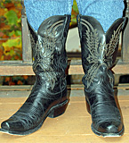 Lucchese N1560 Boots