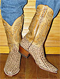 Lucchese Elephant Boots