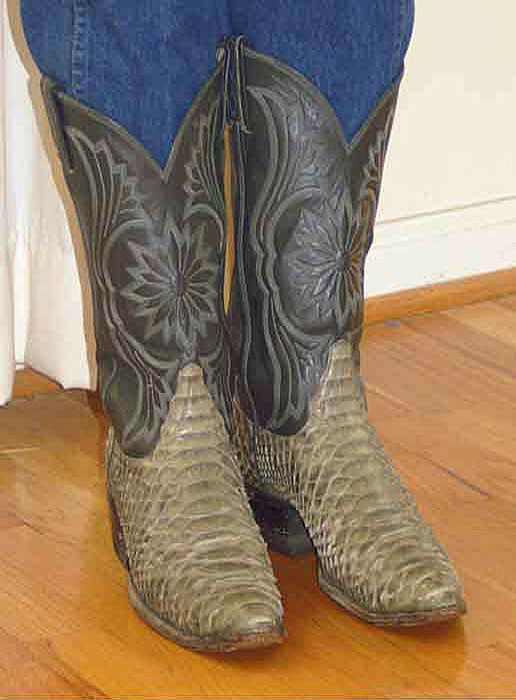Tony Lama Python Boots
